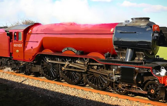 Scotsman in Virgin Red - April Fools Day